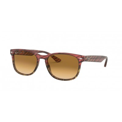 d6f136a5ca525 Ray-Ban Sunglass Collection