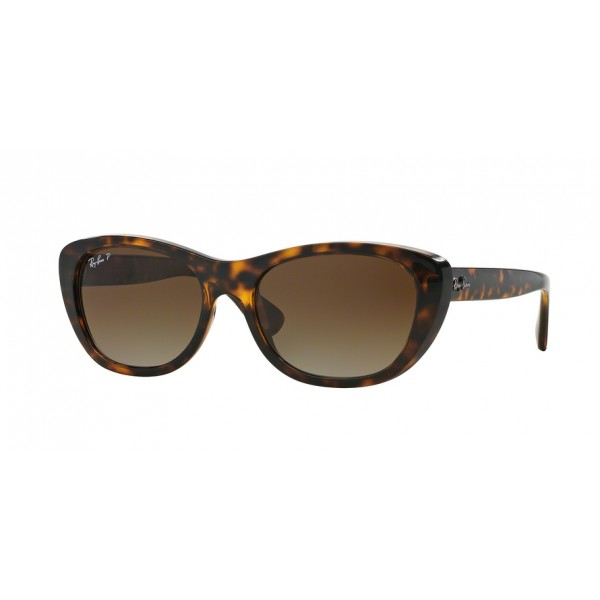 Ray-Ban 0RB4227-710/T5